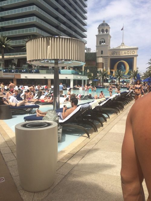 Boulrvard Pool Day